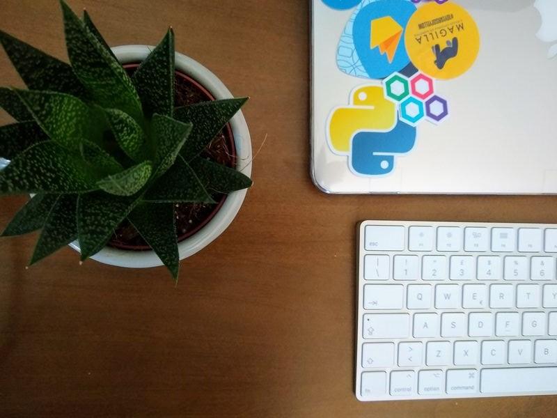 pianta-tastiera-computer